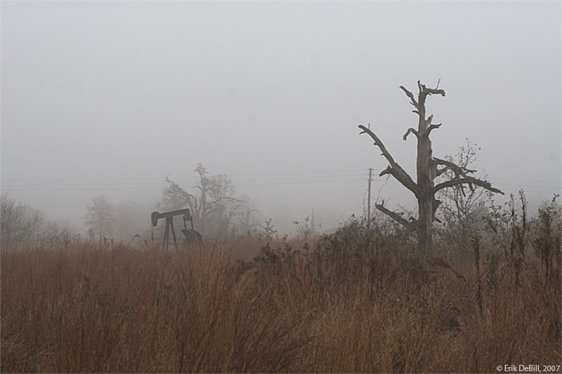 Pumpjack and Dead Tree